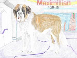 Maximillian 19-28-7
