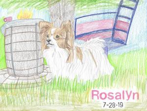 Rosalyn 19-28-7