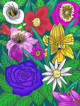 Group of flowers color 2021 by Lisa22882