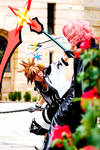 Sora and Marluxia - Fight