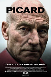 Star Trek: The Final Generation - Picard Poster
