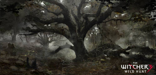Oak by Marmad