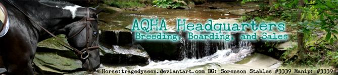 HEE AQHA Headquarters - Banner ~2017~ by GabriellasFantasy