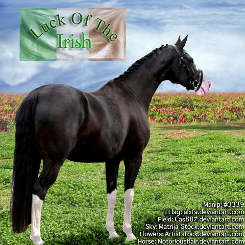 HEE Luck Of The Irish - Horse ~2017~ by GabriellasFantasy