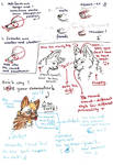 Tutorial notes part 1 of 4
