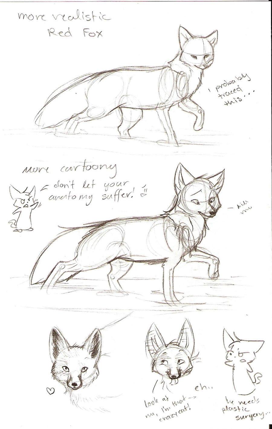 Tutorial Sketch: Fox 2 by Joava on DeviantArt