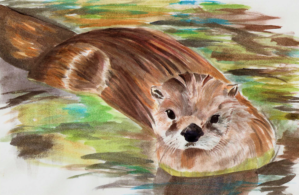 Otter Watercoler by Joava