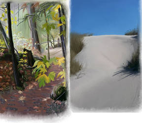Forest and Beach  by Joava