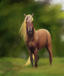 Blond Horse by Joava