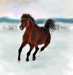 Snow Horse by Joava