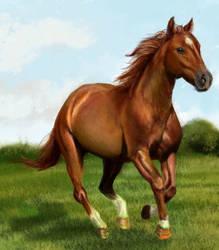 Sunny Horse by Joava
