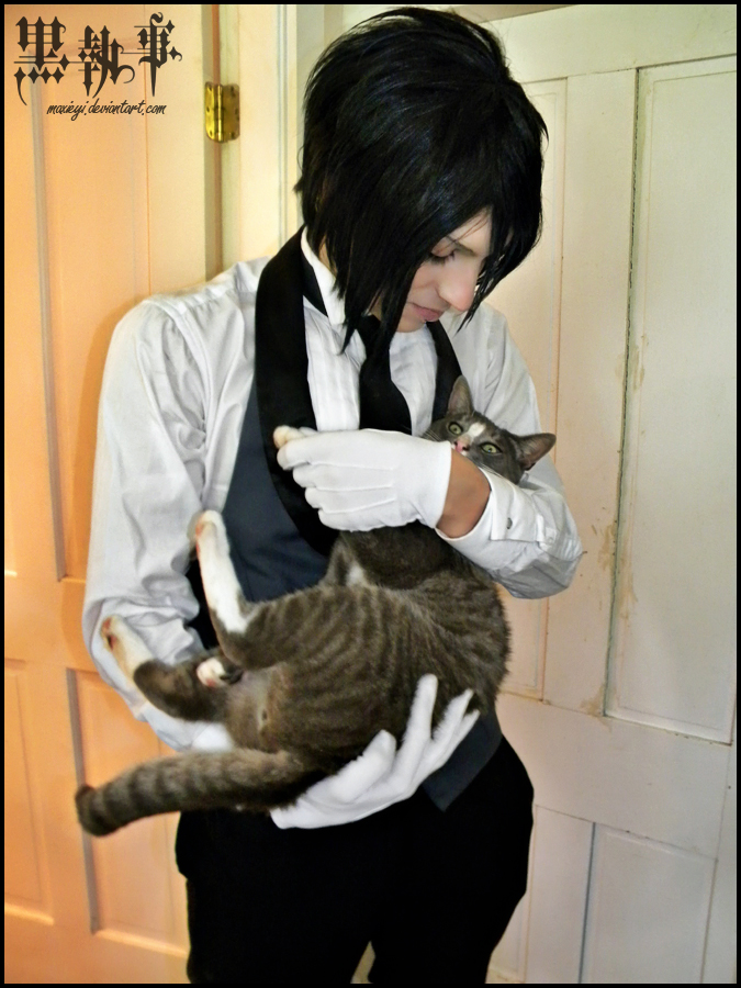 Black Butler Cats Are Sublime Gif