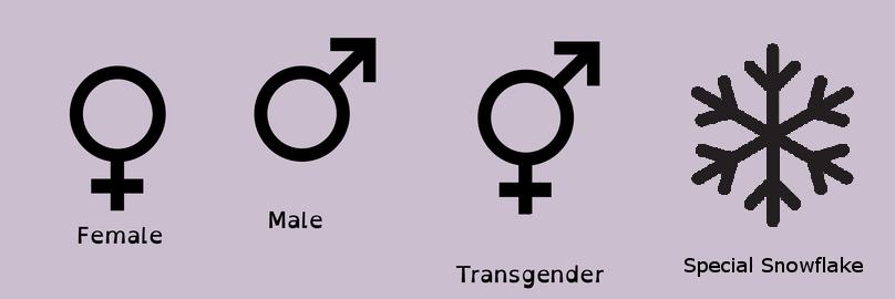 Improved Gender Chart By Kierany9 On Deviantart