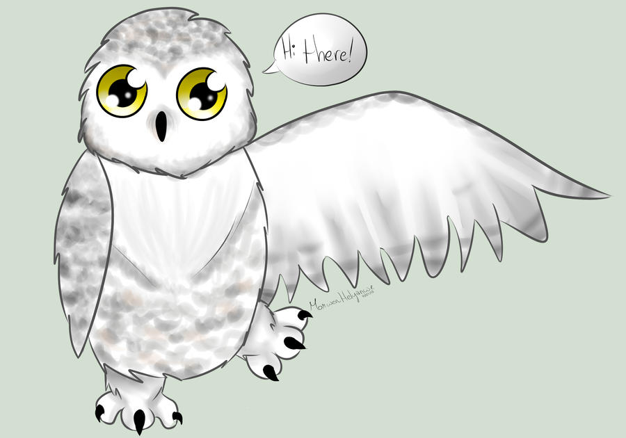 cute snowy owl by morwenhelyanwe on deviantart