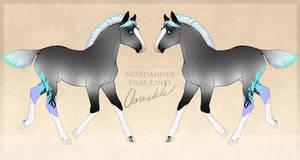 AnimalGirl1869 Nordanner Foal Design 2