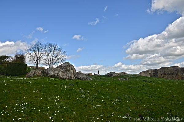 Chateau De Falaise by liketheflowingrive