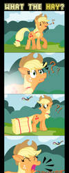 What the HAY? by UltraTheHedgetoaster