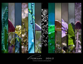 Bokeh 2012 Calendar by hellfirediva
