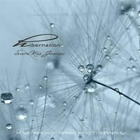 Hibernation - CD Cover