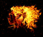 Music of Fire