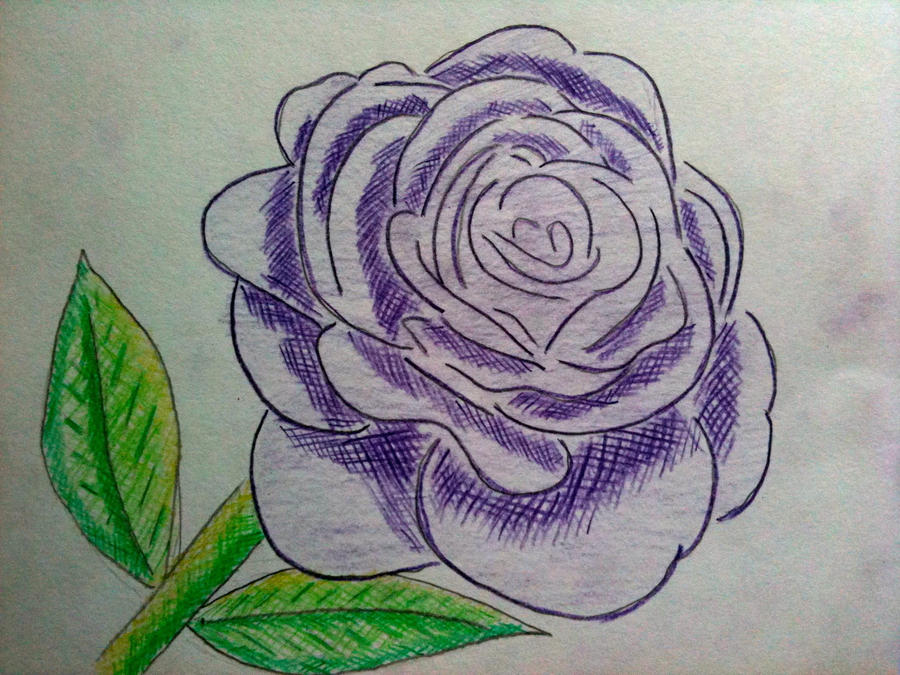 how to draw a rose with a stem