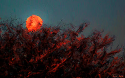 A Blood Moon Rising