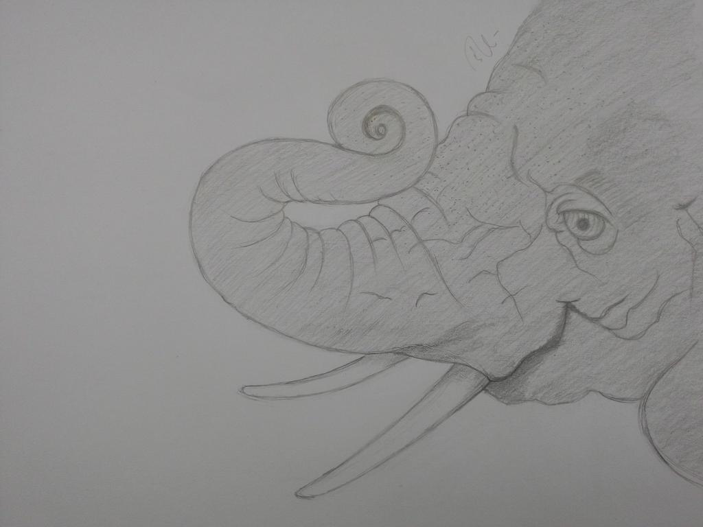 Elephant by artaddictive
