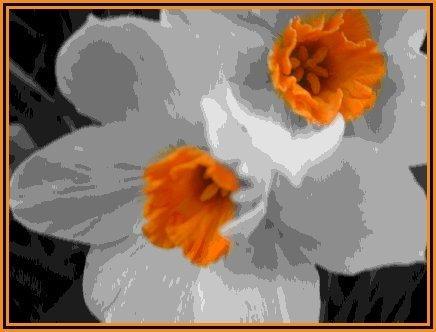 radioactive daisy by mushmellow