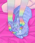 Cat Love 3