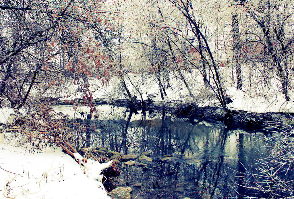 Winter Wonderland 3 by amberleephotography