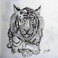White Tiger by NamieLeeForest