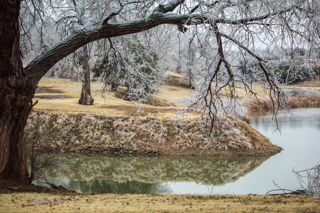 2017 Oklahoma Ice Storm - Pond by SunsetSailor