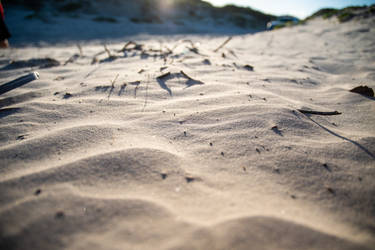Sand - Mustang Island State Park - Padre Island