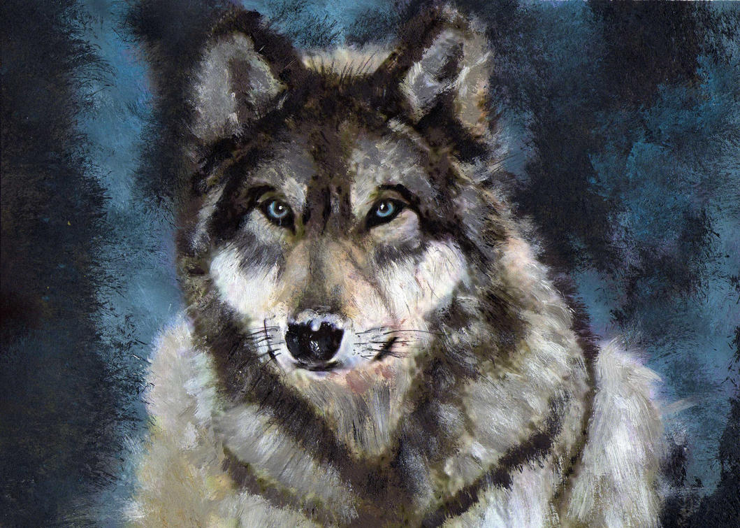 Gray Wolf By Barefoottiger On Deviantart