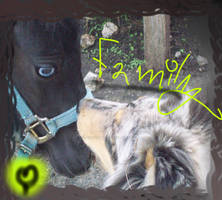 .::Family::. Blueeyes and Aoi