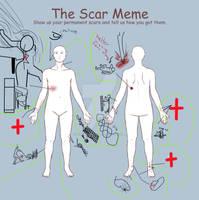 my scars on scar meme