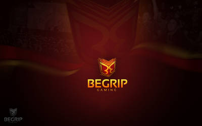 Begrip Gaming New Logo by spyers