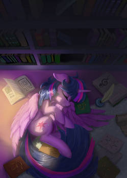Morning of the library