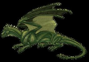 Pern Dragon Commission by JadeRavenwing