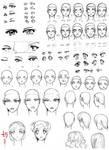 Study: Eyes