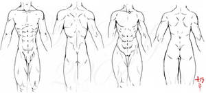 Study: Muscles by The-Nai