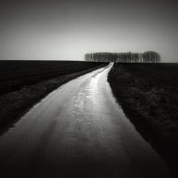 3746 by Demaret-Didier