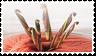 Crochet stamp by lokifan50