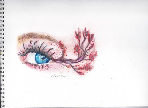Forest Eye