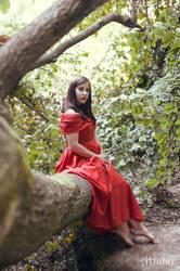 red rose in a green garden