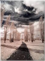 Stonehenge Path by JohnK222