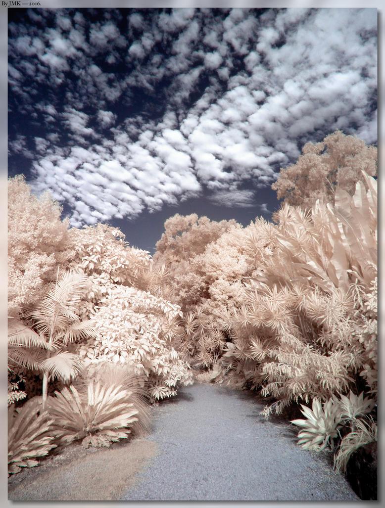 Another Magic Garden by JohnK222