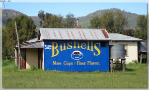 Restored Bushells Sign by JohnK222