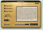 Black + Gold Interface