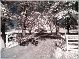 Stonehenge Station Driveway by JohnK222